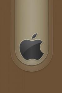 apple_003