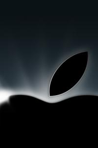 apple_028