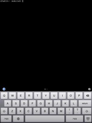 MobileTerminal-iPad-02
