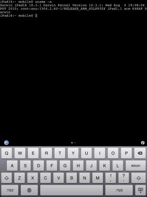 MobileTerminal-iPad-03