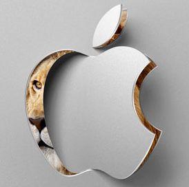 apples plans1