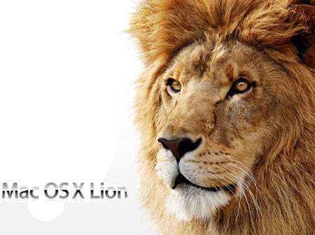 Lion2702