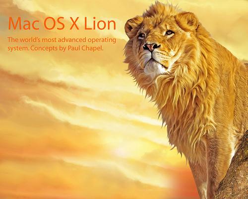 Lion2802