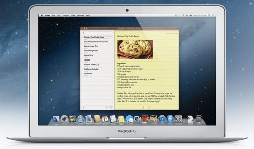 mountainlion-1